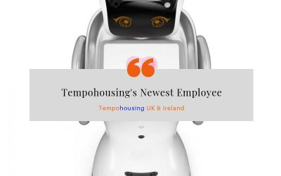 Tempohousing's Newest Employee