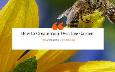 How to Create Your Own Bee Garden